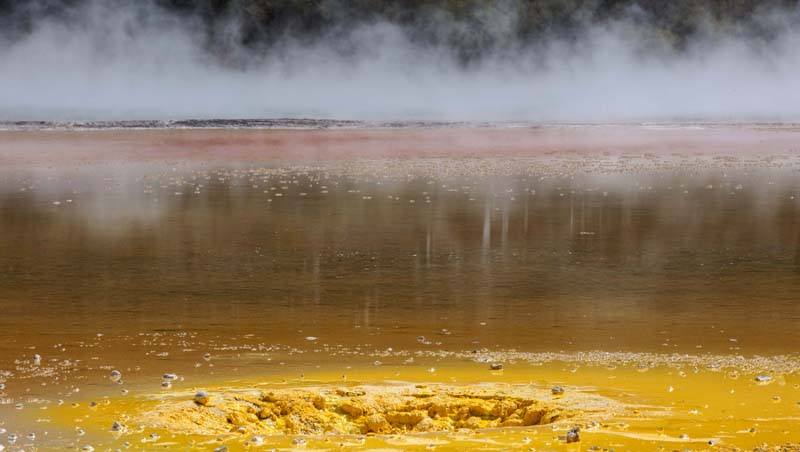 Jonathan Barran Thermal Photography, Thermal Photographer in Rotorua NZ